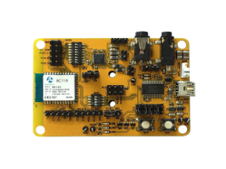 Audio Amplifier Through Hole PCB Assembly